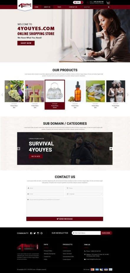 Portfolio analog co affortable website comapny 3